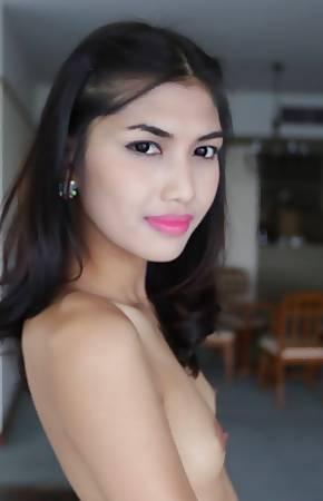 thai ladyboy pics